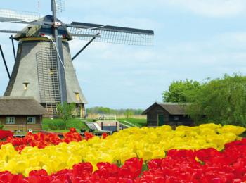 CROCIERA FLUVIALE – Le crociere dei tulipani – Speciale 25 Aprile